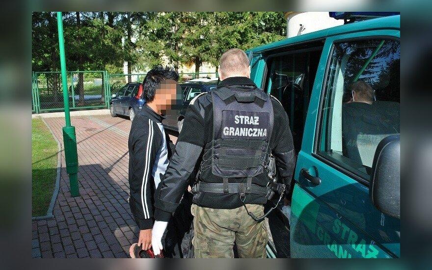 Migranci w bagażniku. Foto: strazgraniczna.pl