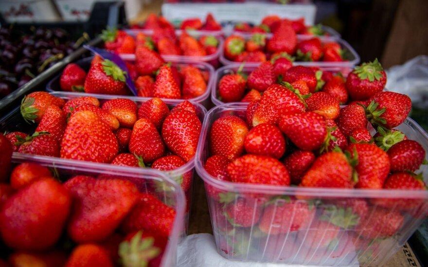 Усы клубники идут нарасхват: в какую цену будут ягоды