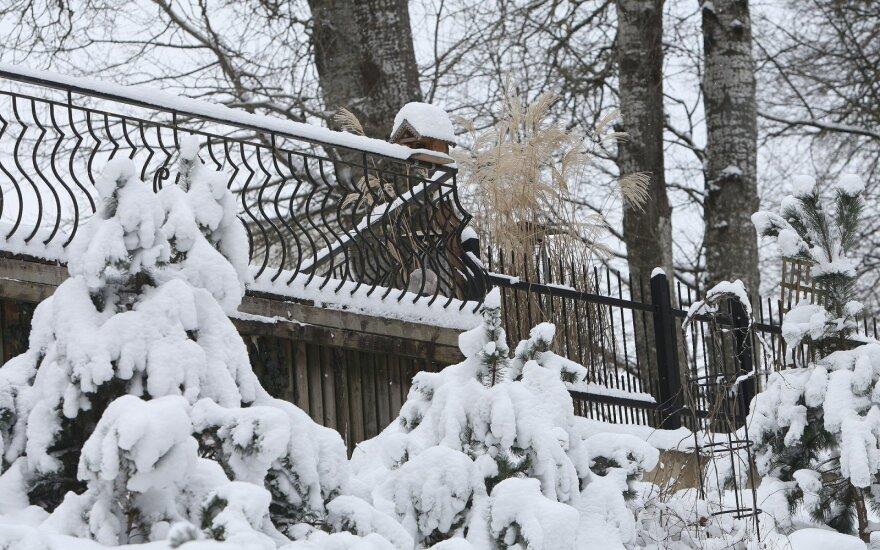 Žiema Druskininkuose