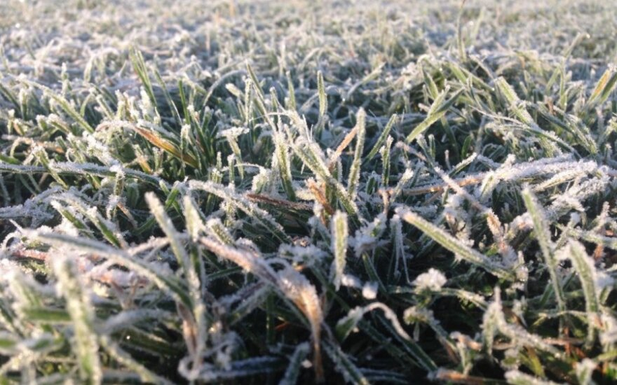 Погода: к концу недели в Литву вернется тепло