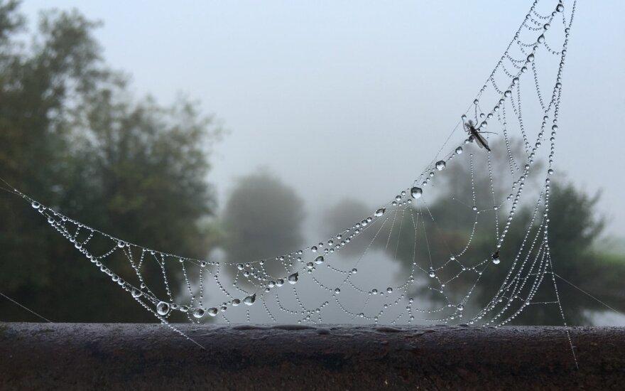 Прогноз: почувствуется осень