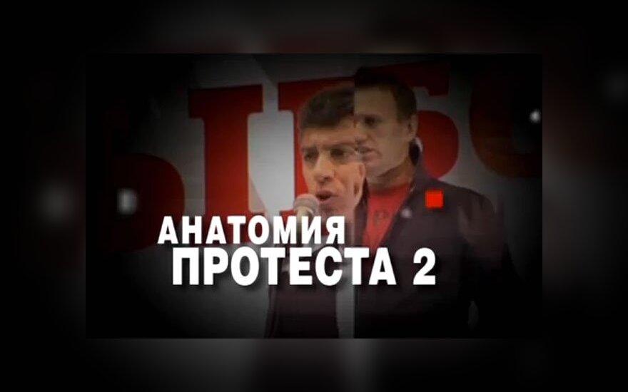 """Грузия проведет проверку по """"Анатомии протеста 2"""""""