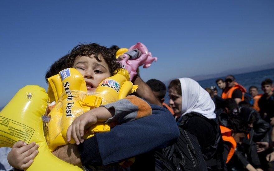 Eurostat: Каждый пятый беженец в Европе — сириец