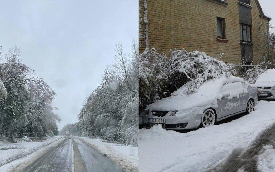 Такого начала мая в Литве давно не было: шел снег, валились деревья