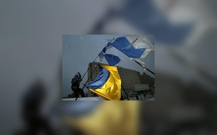 Viktoro Janukovičiaus šalininkas Kijeve
