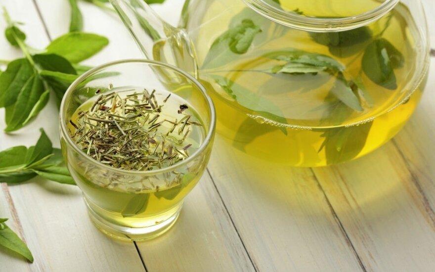 Зеленый чай против болезни Дауна: удивительные результаты