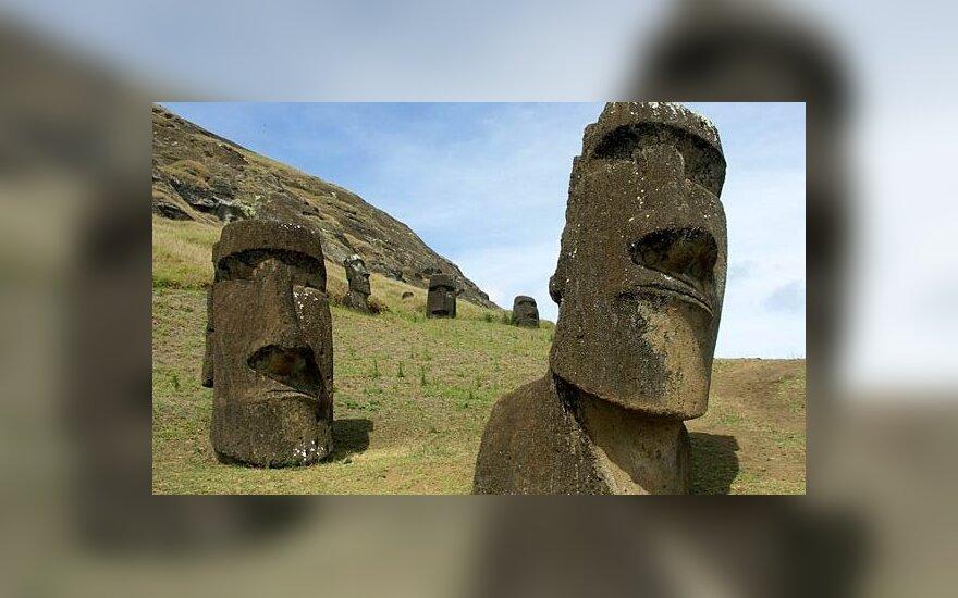 Разгадан секрет острова Пасхи: как перемещались статуи