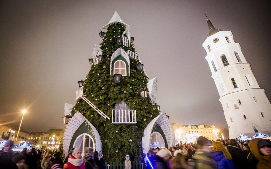 Когда зажгут елку на Кафедральной площади?