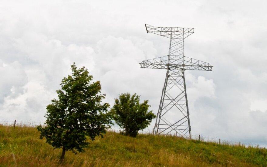 Литва расследует инцидент с отключением электролинии Россией без предупреждения