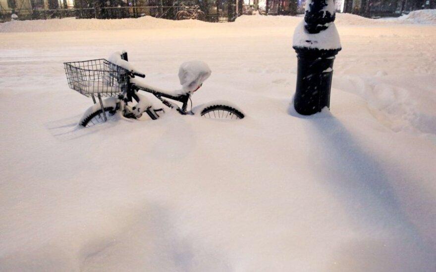 Sniego pūga JAV