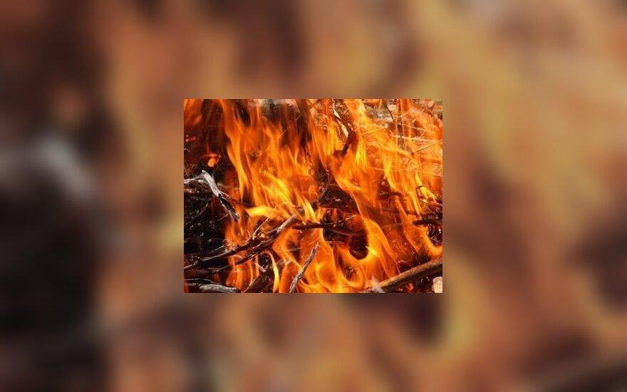 На территории полигона в Пабраде юноша пострадал от взрыва