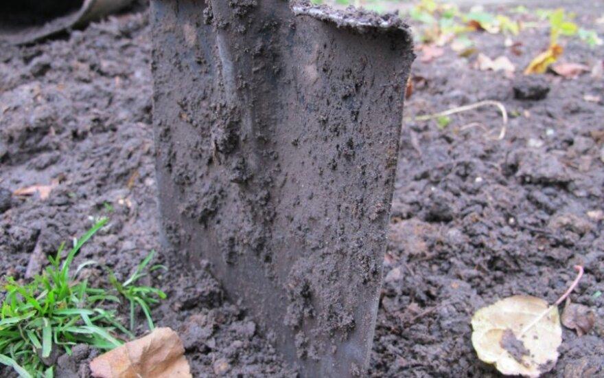 Во дворе у сожителей обнаружен закопанный младенец
