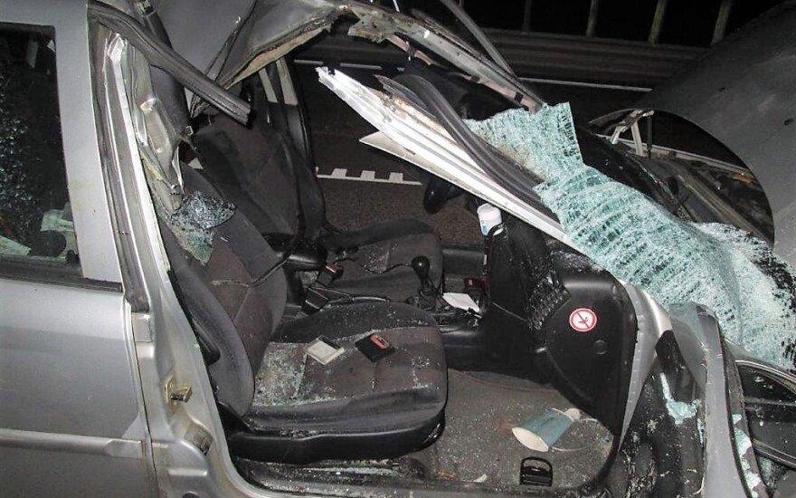 В Игналинском районе автомобиль столкнулся с лосем