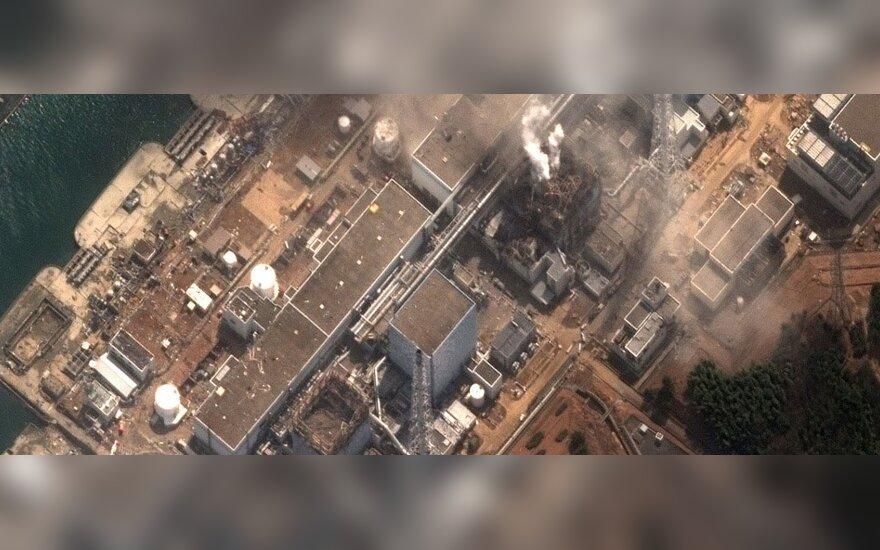 Семашка: аварии в Японии могут повлиять на планы строительства АЭС в Литве