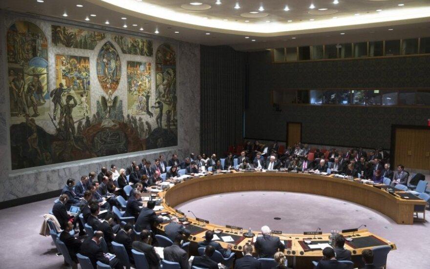 Россия бойкотировала мероприятие Литвы в ООН