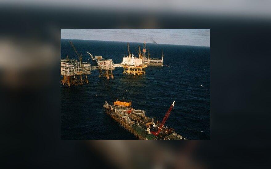 Турция договорилась с компанией Shell о разведке нефти