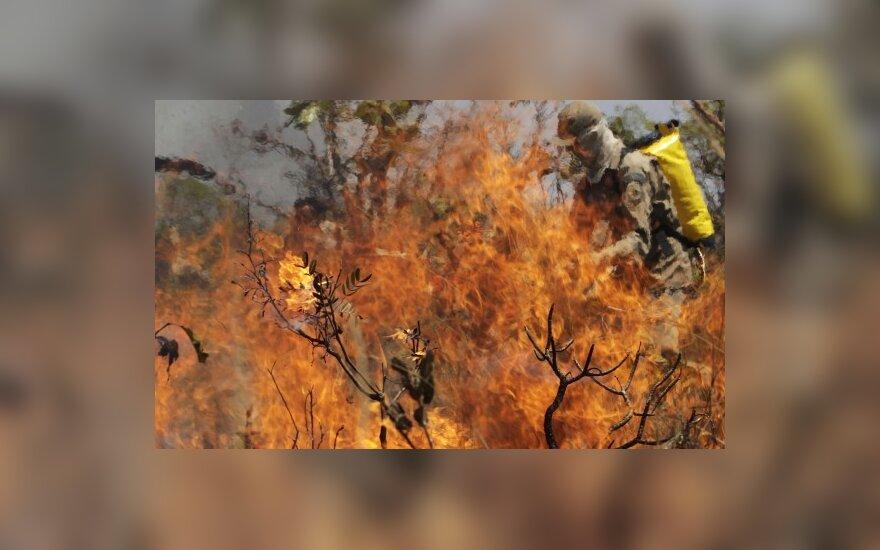 В праздничные дни во время пожаров погибли шесть человек