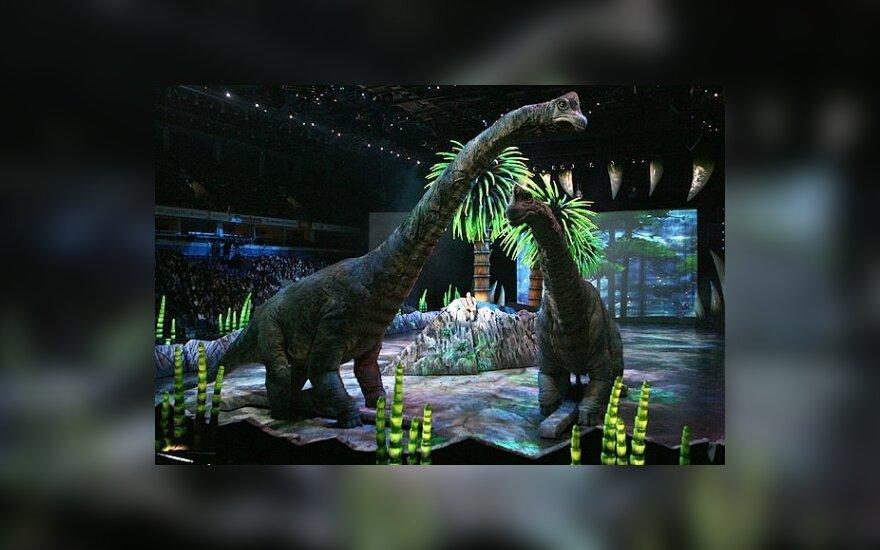 """В Мексике обокрали шоу """"Прогулка с динозаврами"""""""