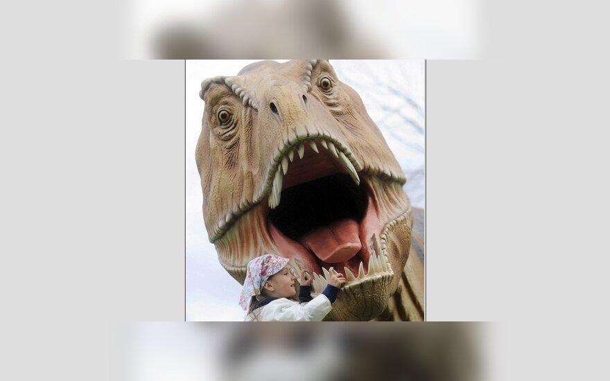Беременный динозавр удивил ученых