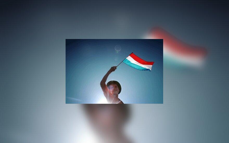 Vaikas, futbolo fanas, mojuoja Olandijos vėliava.