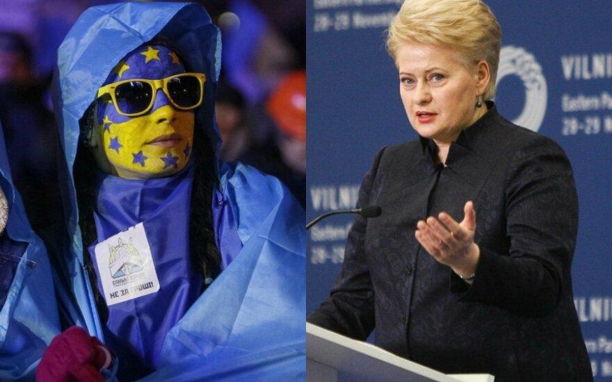 Президент Литвы: Вильнюсский саммит разбудил украинцев