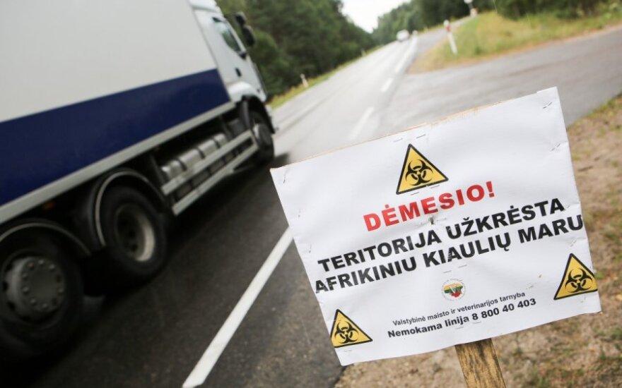 В Рокишкском районе Литвы выявлен новый очаг чумы свиней