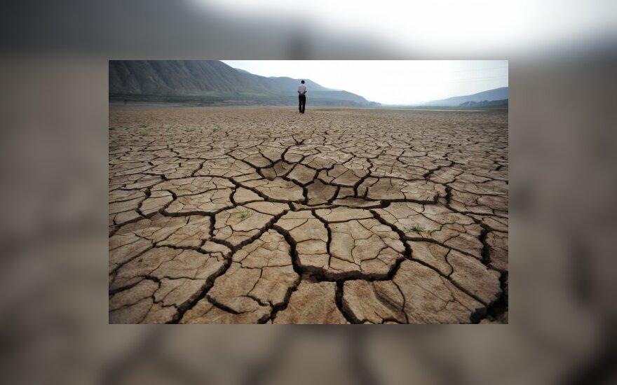 ООН защищает доктрину глобального потепления
