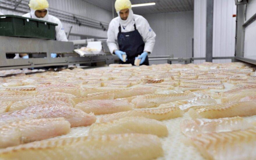 Žuvies produktų perdirbimas