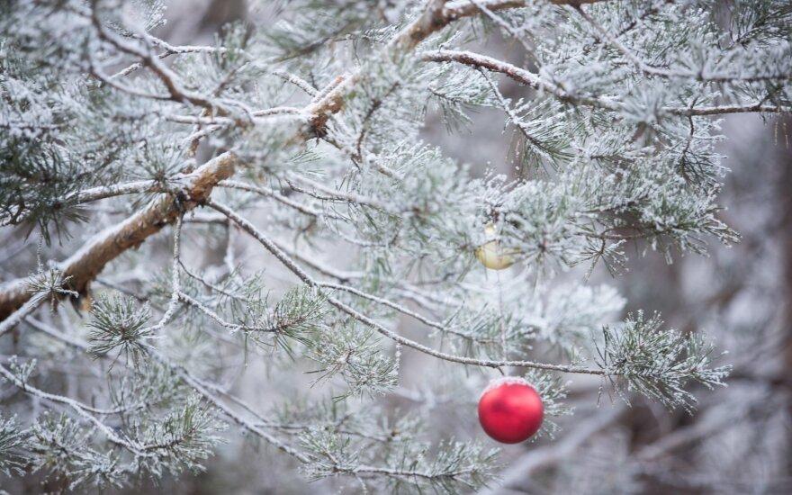 После теплых выходных синоптики прогнозируют похолодание