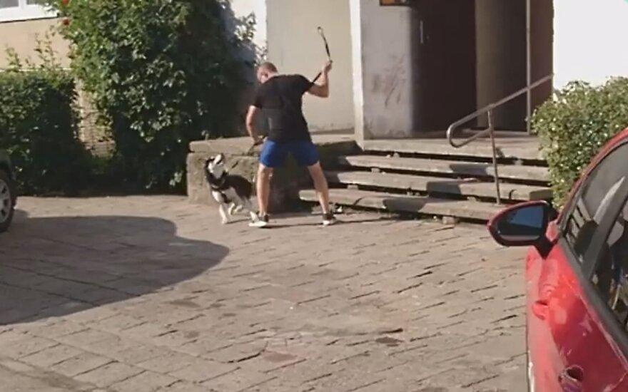 Vyras muša šunį