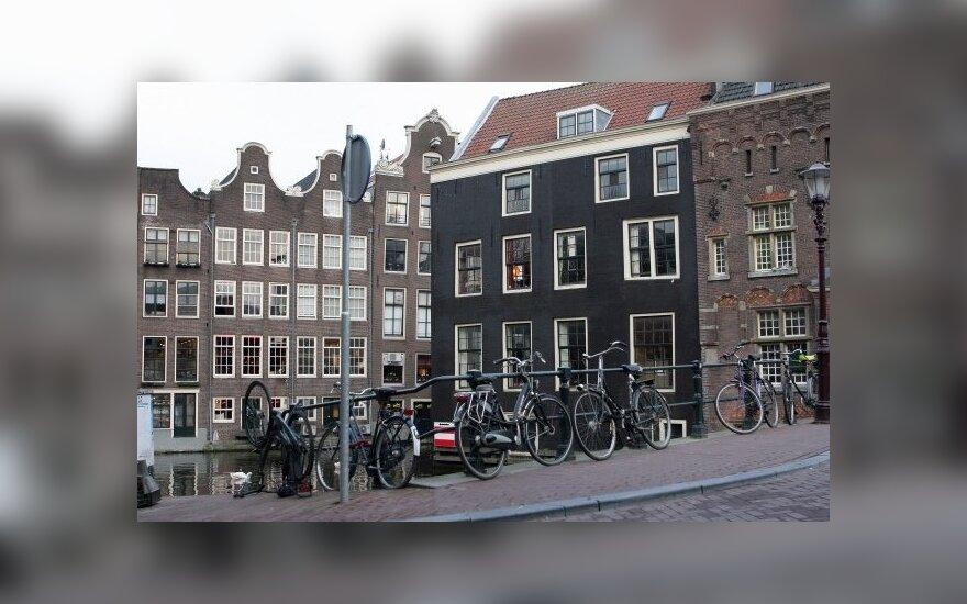 В Амстердаме насильно переселяют неприятных соседей