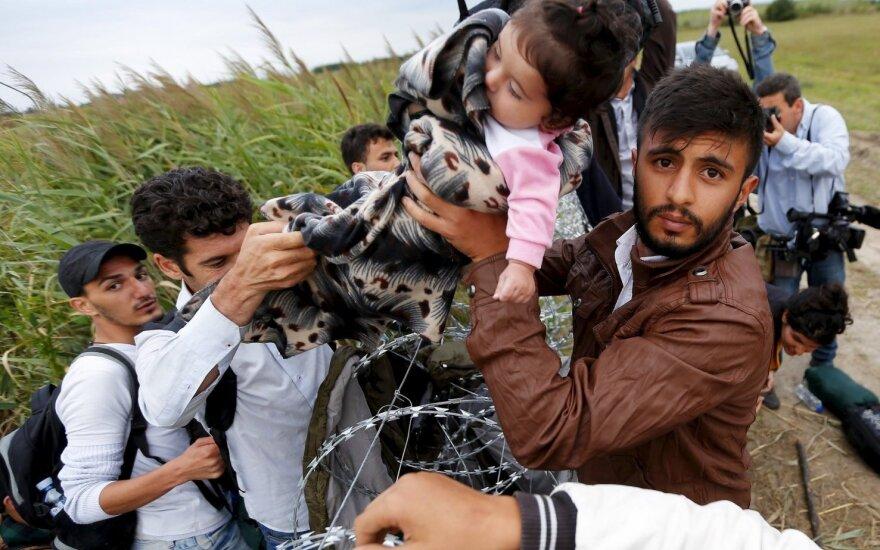 СМИ: ЕС поможет беженцам на Западных Балканах