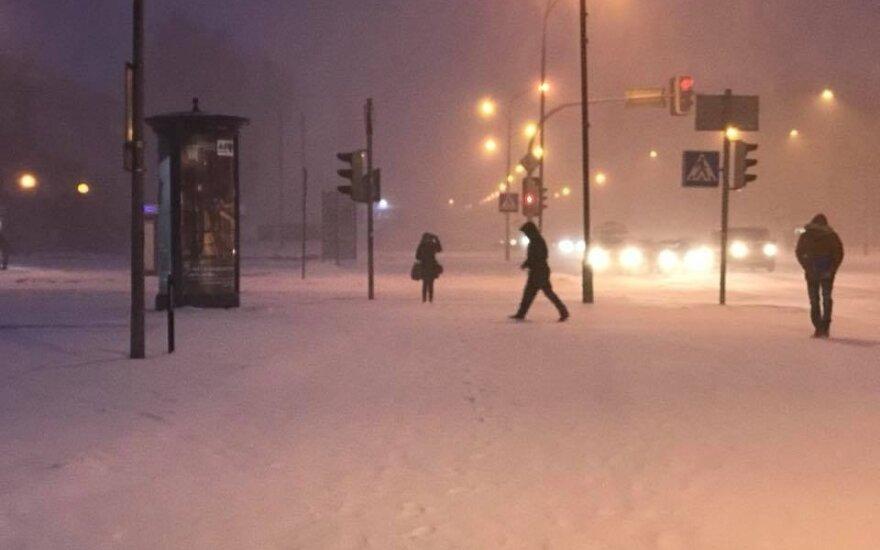 На литовском взморье идет сильный снег
