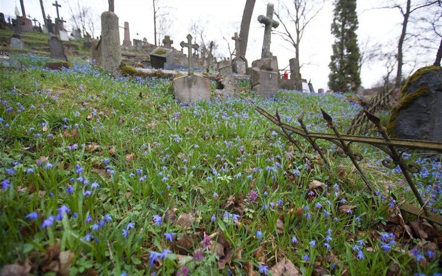 На кладбище Расу выделили 2 млн. евро