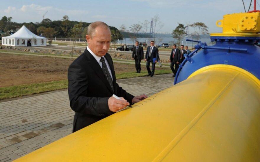 Путин запустил газопровод на остров Русский