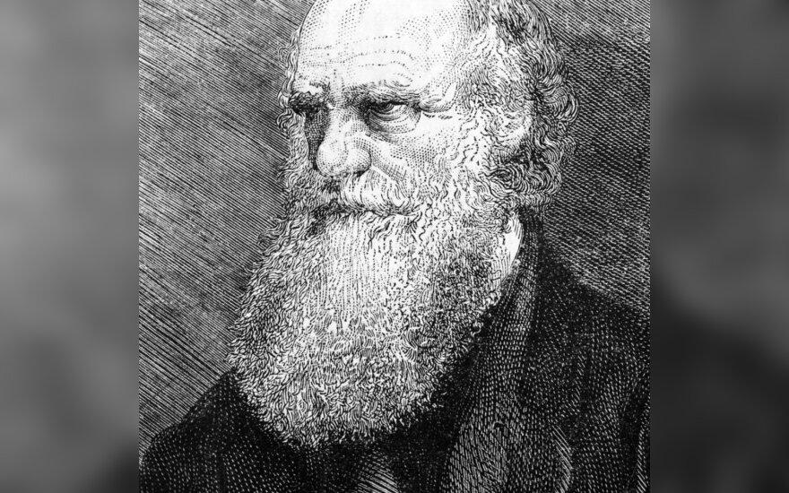 Ученые подтвердили теорию Дарвина