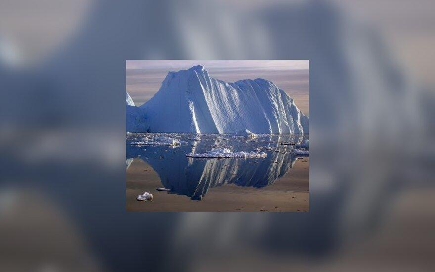 Царапающиеся айсберги оказались угрозой жизни в Антарктике