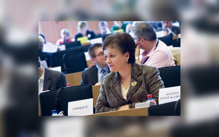 Андрикене: выборы в местные советы в Беларуси не должны быть карикатурой