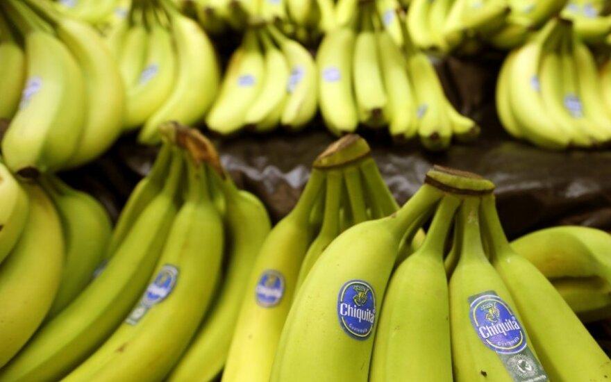 Bananai nokinami etileno kamerose