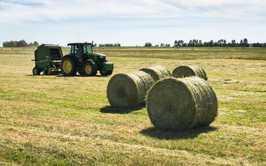 Правительство объявляет экстремальную ситуацию в связи с засухой в Литве