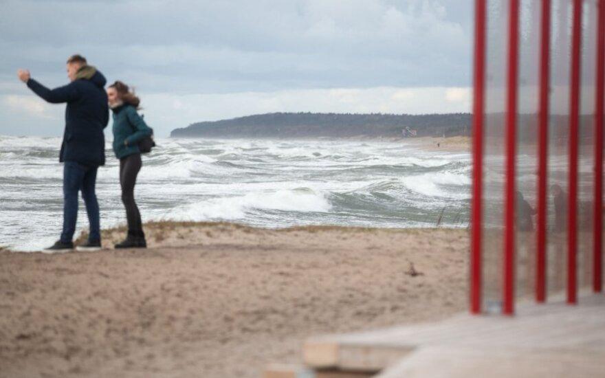 Морские биологи прольют свет на масштабы загрязнений со стороны Grigeo Klaipėda