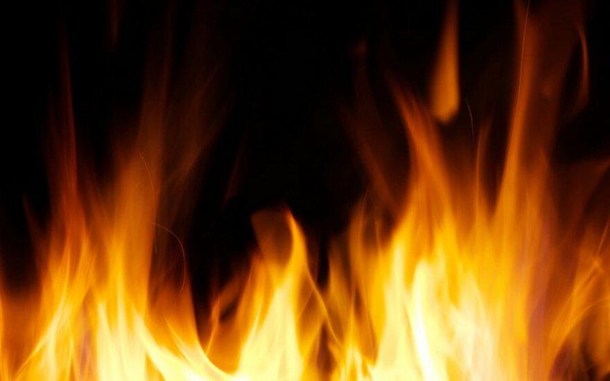 Трагическое Рождество: в Луизиане в трейлере сгорели три ребенка