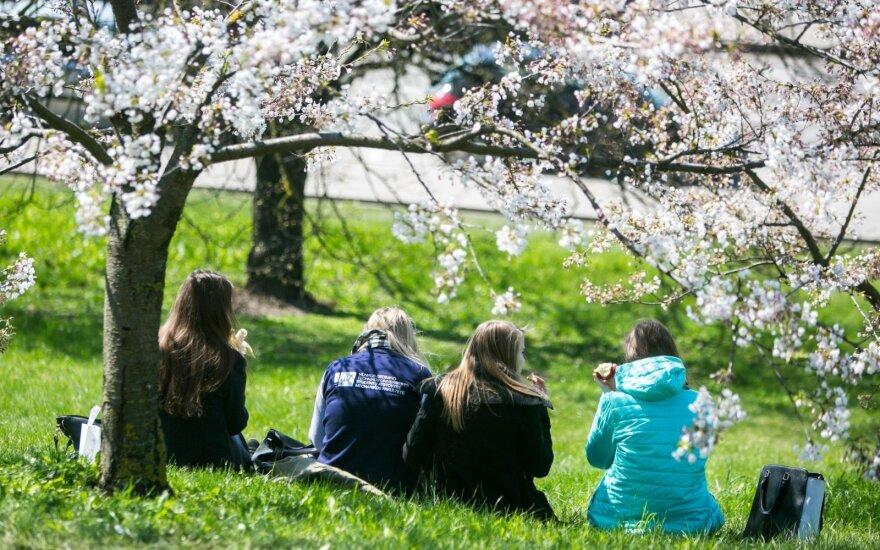 Весна в этом году удивляет: апрель будет ужасным, но тепла осталось ждать недолго