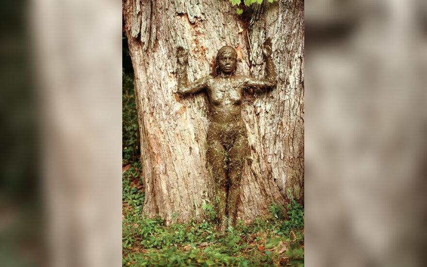 """Kubietės A.Mendietos """"Gyvybės medis"""""""