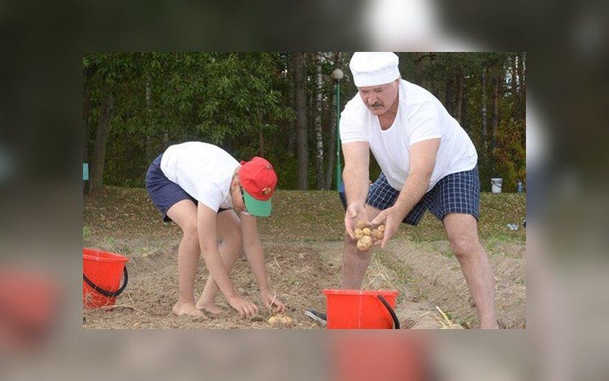 Официальный портал президента Республики Беларусь
