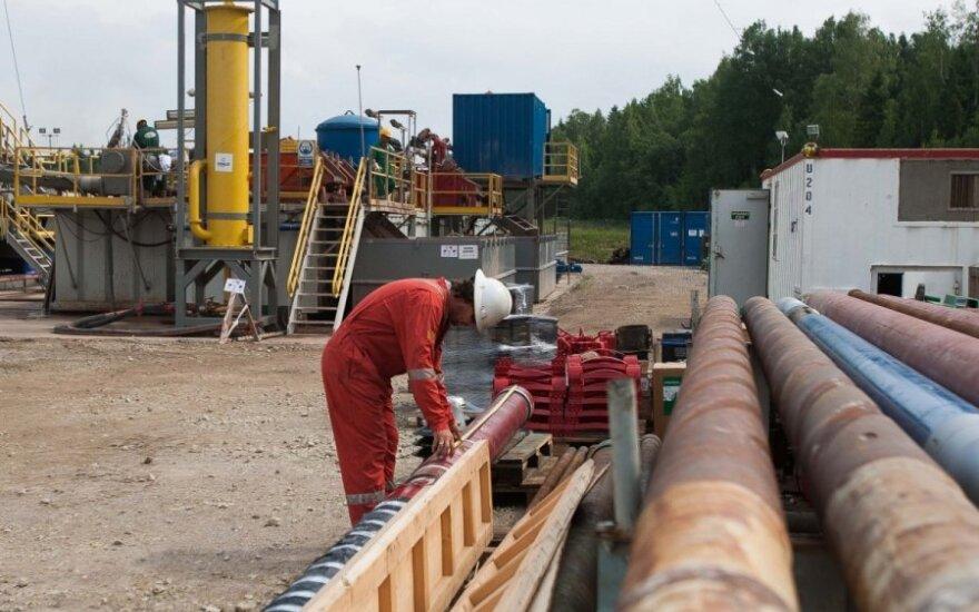 Премьер: Литва в следующем году сократит импорт газа