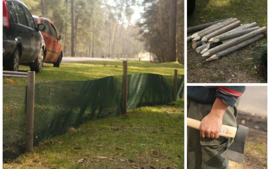 Vingio parke išdygo netikėtas statinys varlėms