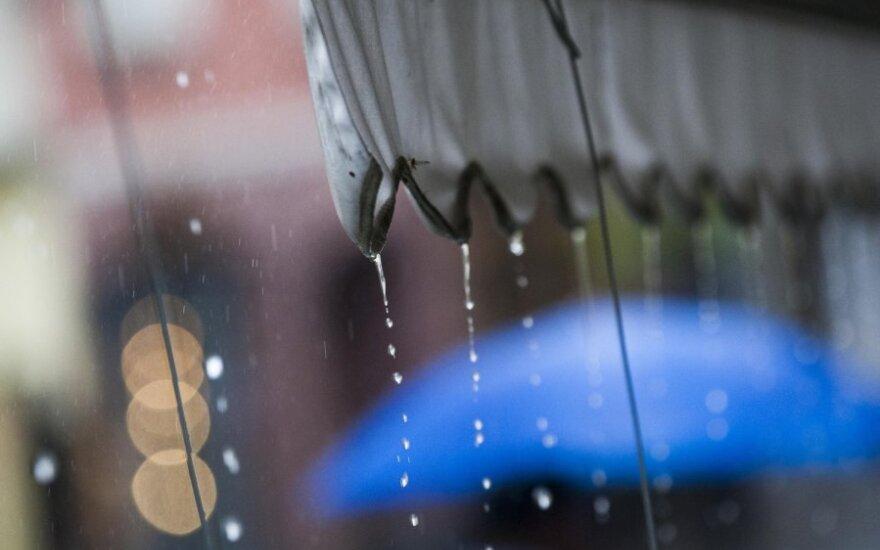 В новогоднюю ночь пойдет дождь, начало 2013 г. морозов не обещает