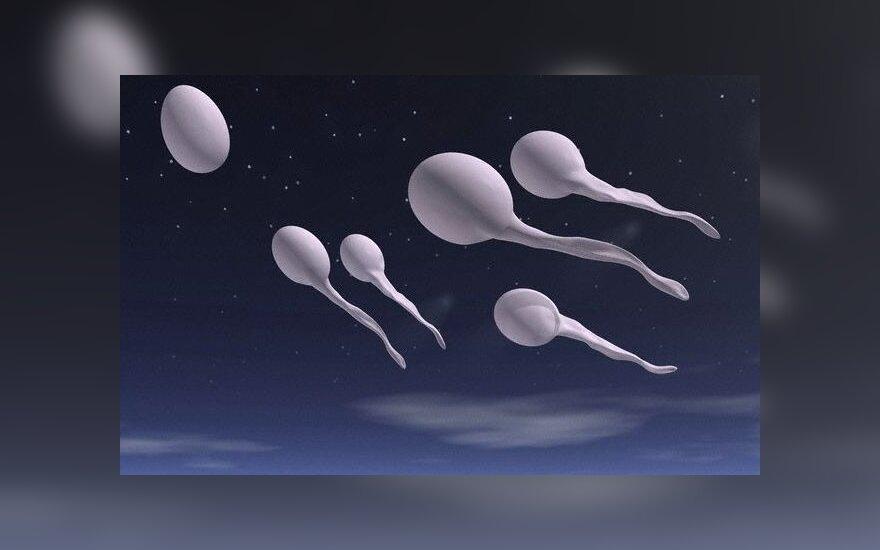 Испанский клуб объявил сбор спермы болельщиков