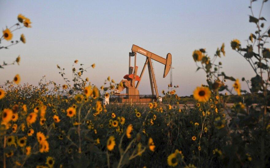 Ropa drożeje od lutego i zbliża się do psychologicznej bariery 50 dol. za baryłkę